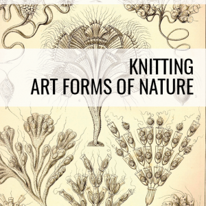 Ernst Haeckel Knitting Art Forms of Nature book