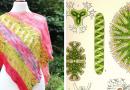 Spirotaenia Condensata release shawl knitting pattern